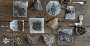Propiedades del té verde en saquitos